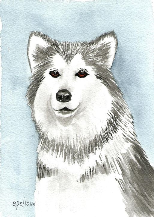 Husky - WatercolorsbySandy