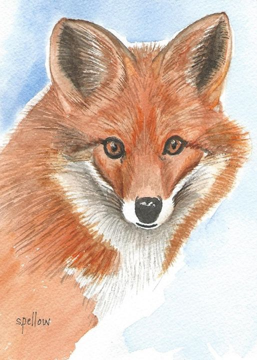 Red Fox - WatercolorsbySandy