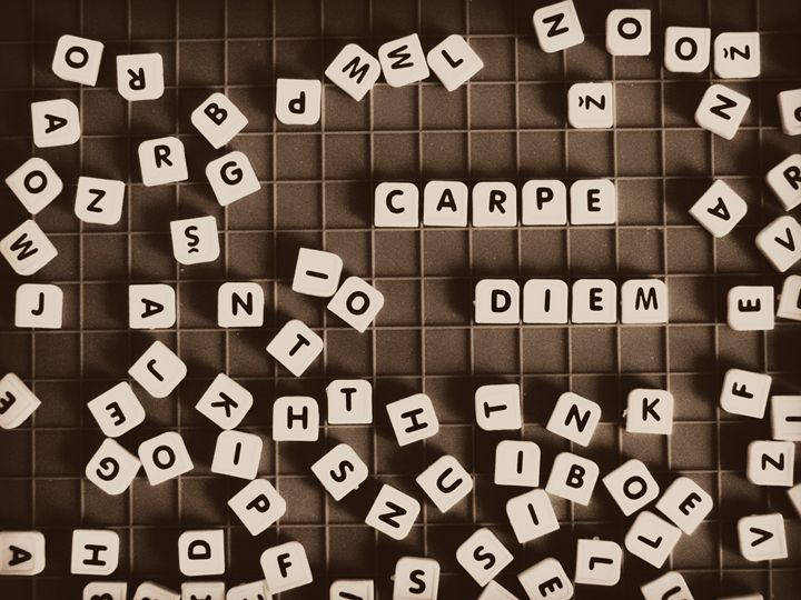 carpe diem cubes - SHOPPINGUSA