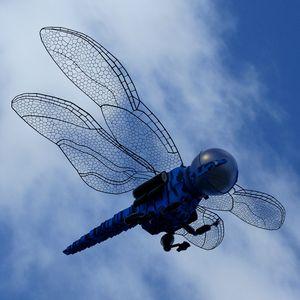 Dragonfly - Matthew James Johnson