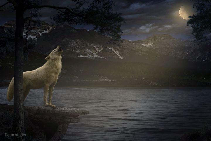 White Wolf Howling - Dejan Travica