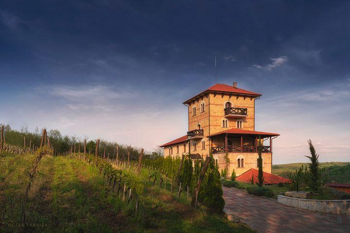 Koporin monastery winery - Dejan Travica