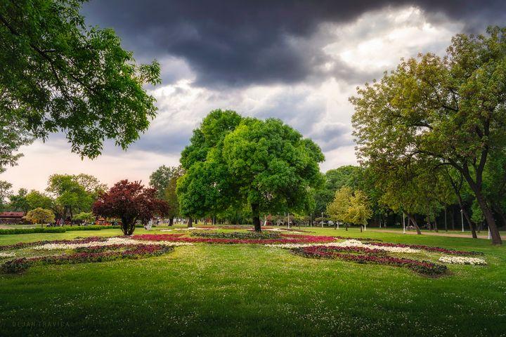 Palic Great park in the spring - Dejan Travica