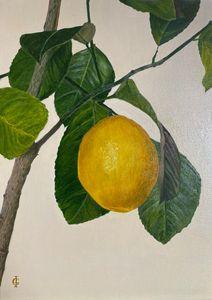 The lemon tree - IGraudinaArt