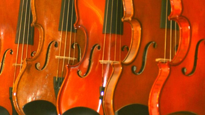 abstract view of violins - Sue Rode Photography