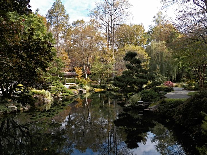 Japanese Gardens - Reflections - My Favorite Photos