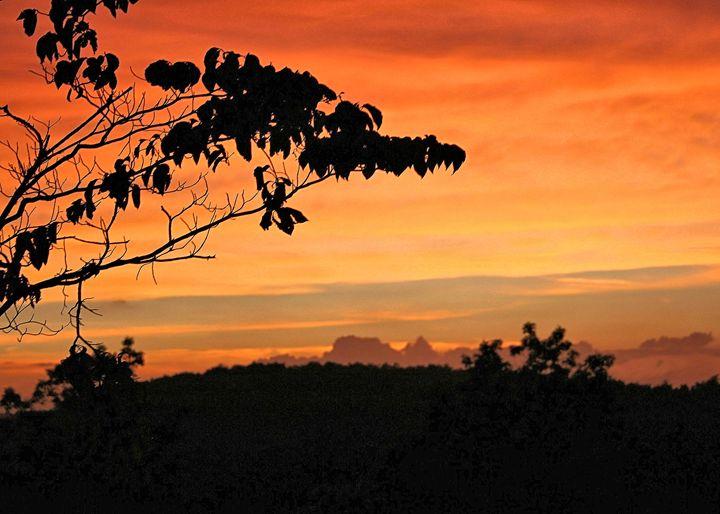 Amicalola Falls - Sunset - My Favorite Photos