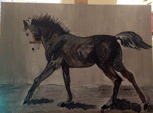 Horse in gray