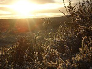 Yorkshire Moorland Winter