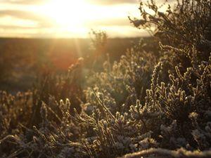 Winter Moorland (2)
