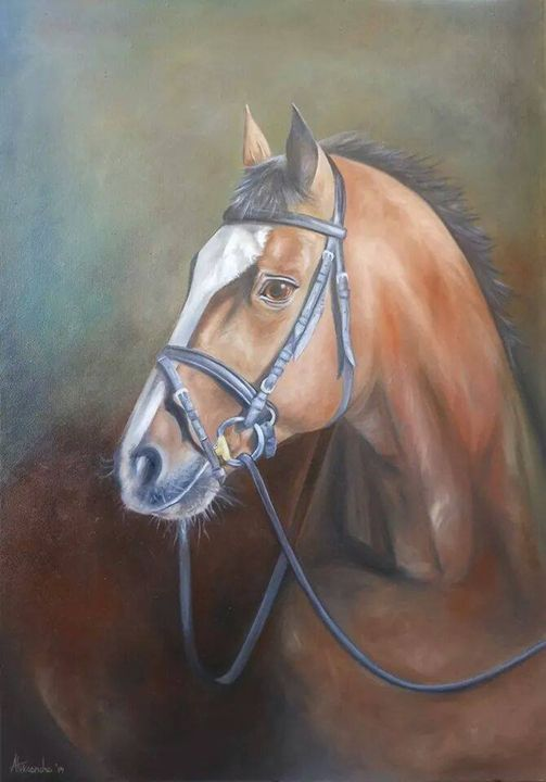 Horse -  Daliborlee