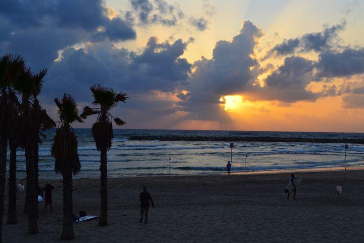 Tel Aviv Beach - Amanda Chaplin