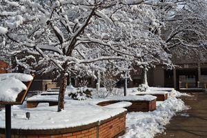 Boston University West Campus