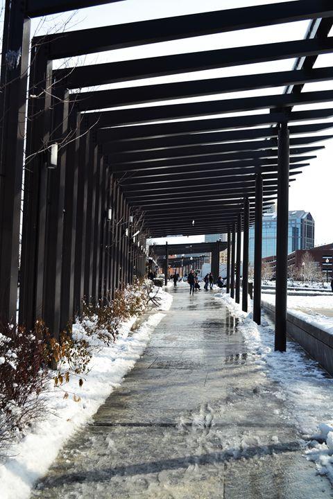 Pathways - Amanda Chaplin
