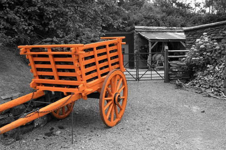 Horse Drawn Cart - Aidan Moran Photography