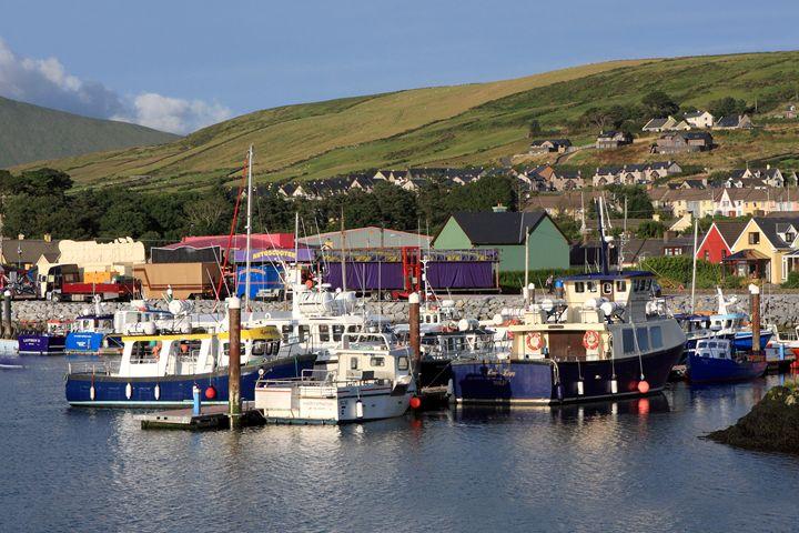 Dingle Harbour County Kerry Ireland - Aidan Moran Photography
