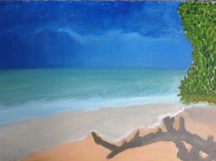 Pristine  beach - divaki