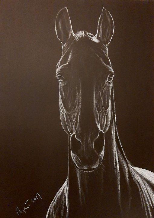 Black beauty - Art by Mary