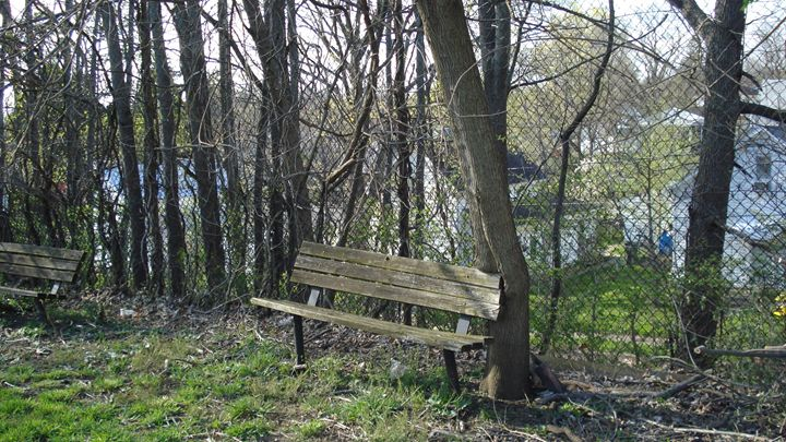 old benches - liliann