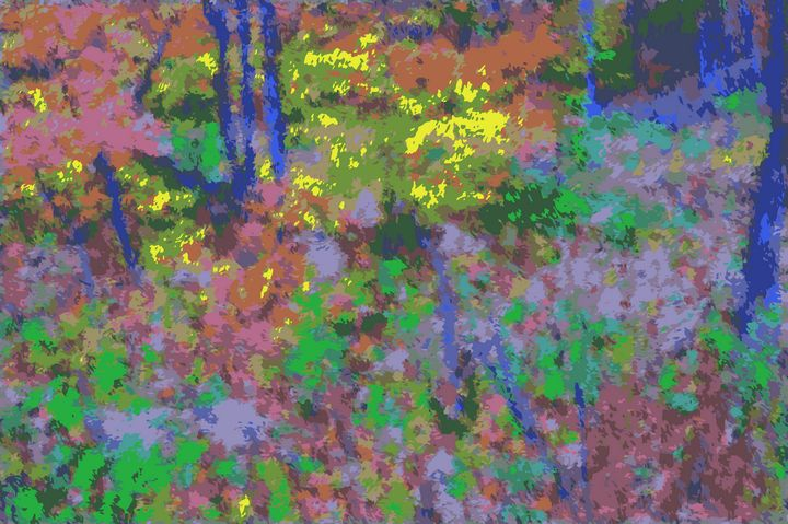Woods Scene - Stewzart