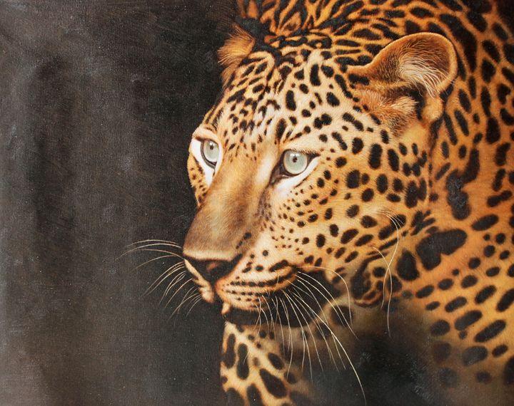 Spot - Portrait Masterpieces