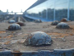Metal turtles