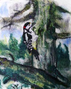 Woodpecker - Susanne Weber