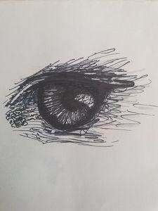 Eagle Eye Sketch