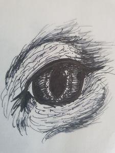 Sketch Cats Eye