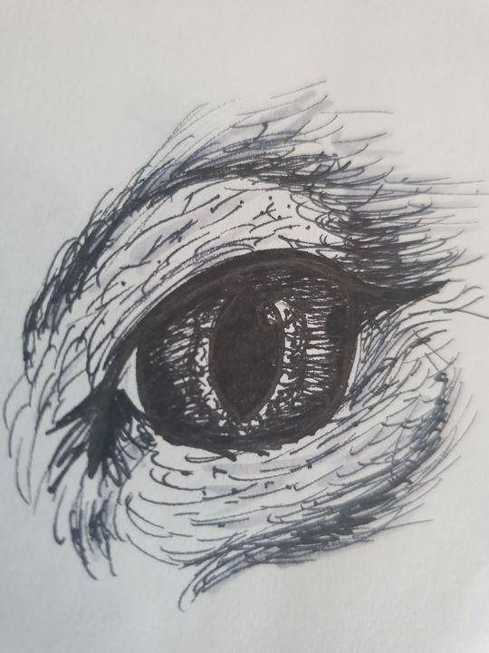 Sketch Cats Eye - Chloe
