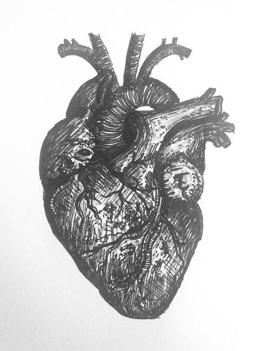 Human Heart - Chloe
