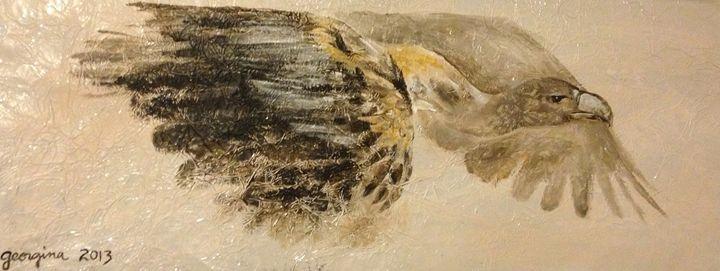 Griffon Vulture - Geo Sabor