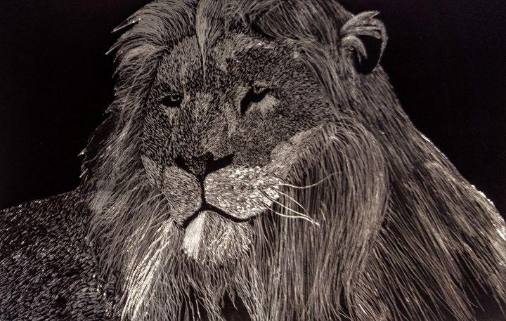 Lion - Asim's Art