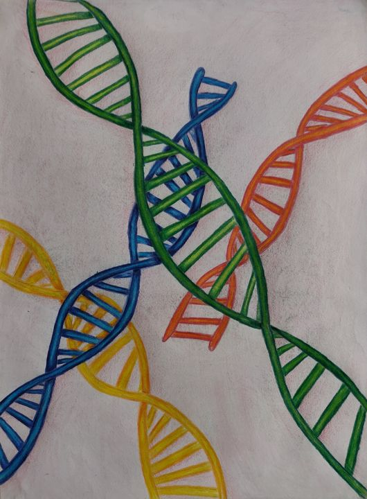 DNA - Asim's Art