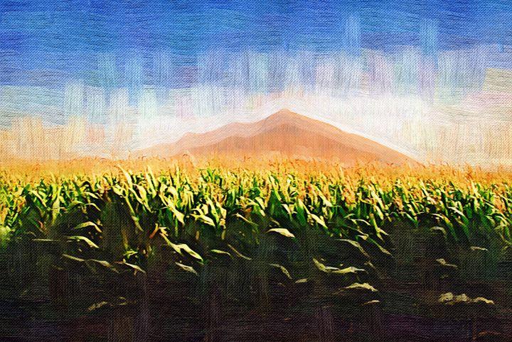 Corn field - meredesromero