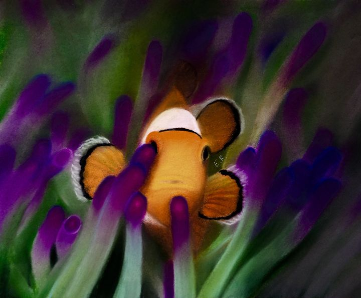 Clownfish Peaking Out - Eric's Art Gallery