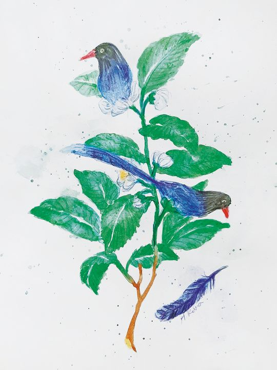 Imaginary Plants #3 Neverland - H.Kuma