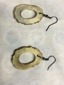 Naturally shed deer antler earrings