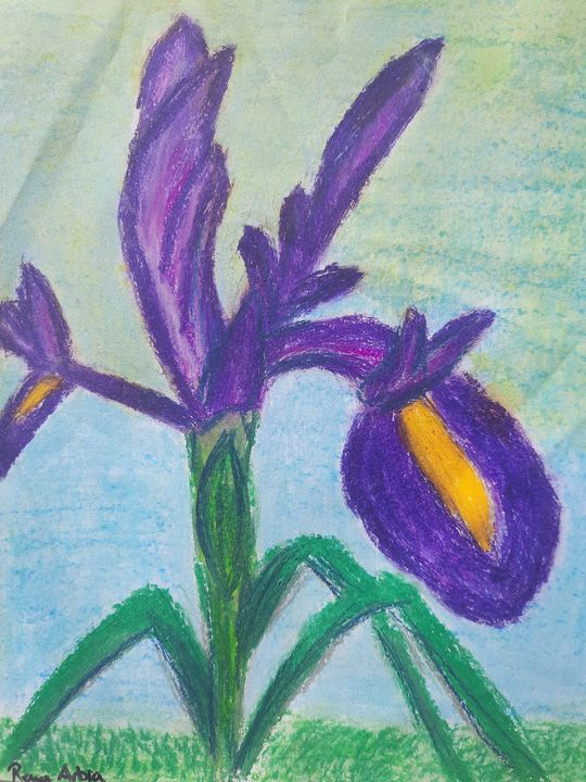 Iris - Renee Arbia Art