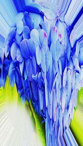 Hydrangea - Helen A. Lisher