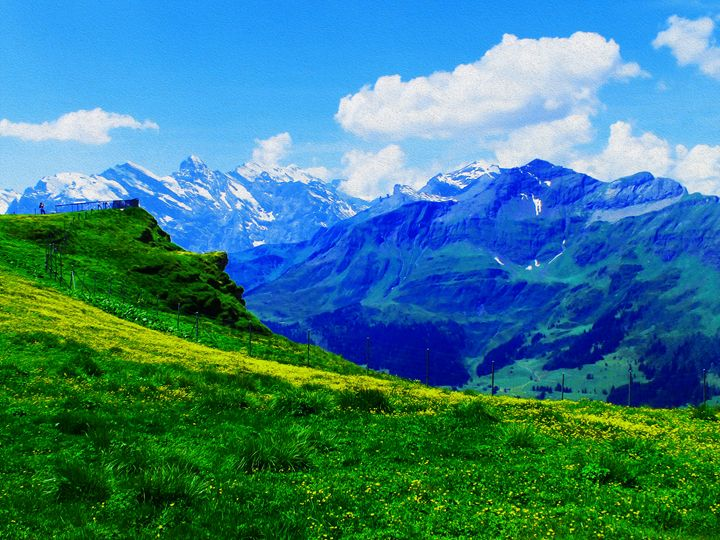 Summertime in the Swiss alps - Helen A. Lisher