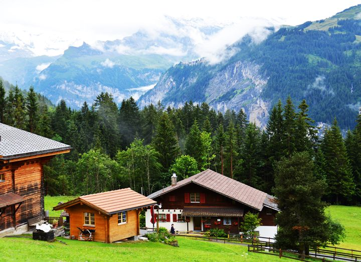 Summer in the Swiss alps - Helen A. Lisher