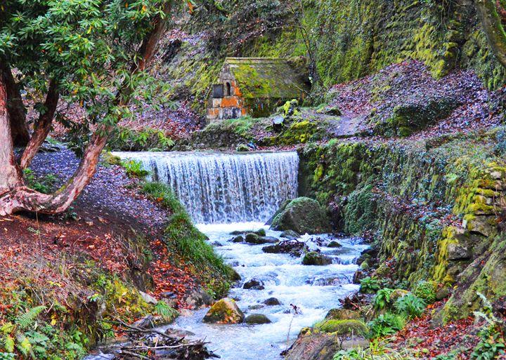 Stream in Cornwall - Helen A. Lisher