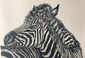 Zebra graphic