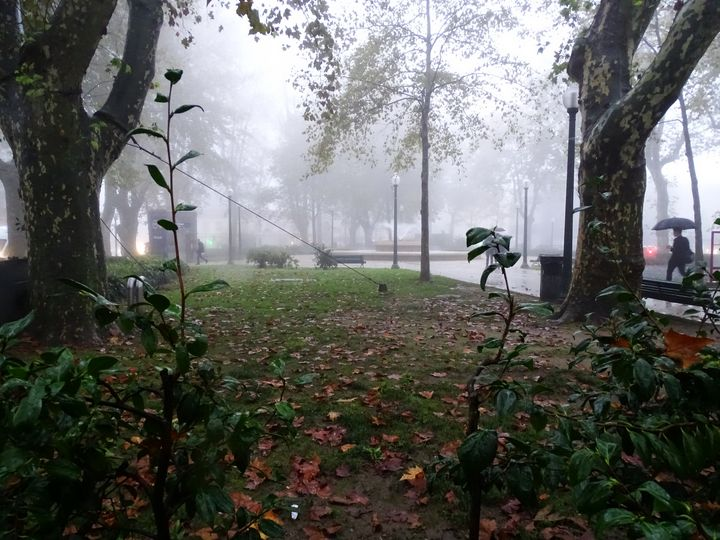 Foggy square - Ember