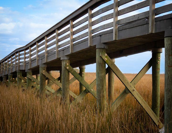 Boardwalk Over Marsh - Creative Artistry by Janice Solomon