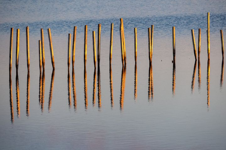 Posts at Blackwater - Creative Artistry by Janice Solomon