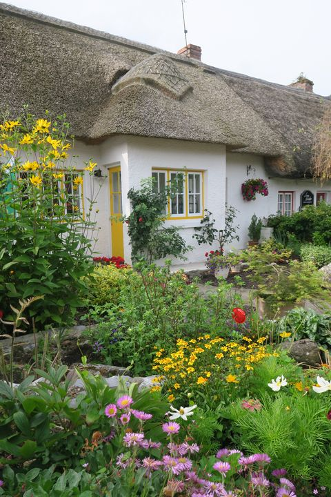 Thatched cottage in Adare, Ireland - Creative Artistry by Janice Solomon