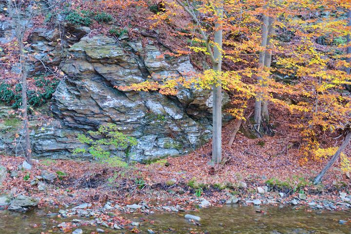 Fall colors in Thurmont - Creative Artistry by Janice Solomon