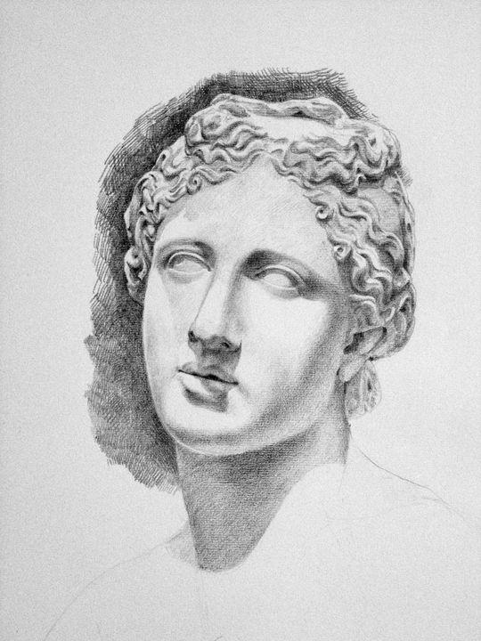 Venus - Papo Dsign Gallery